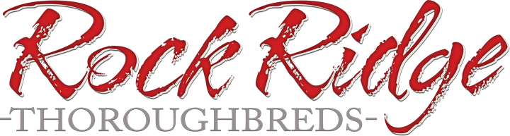Rock Ridge Thoroughbreds